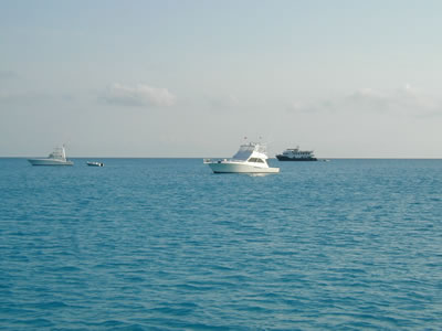 The two sport fishing yachts you see in the foreground are named Whatever ...